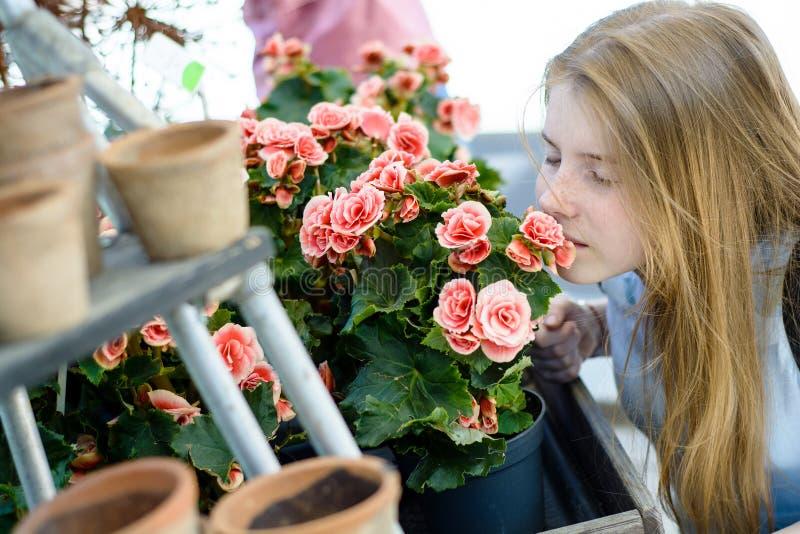 Giovane adolescente felice con una rosa fotografia stock libera da diritti
