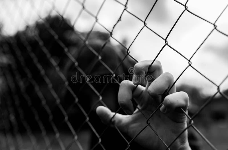 Giovane adolescente non identificabile che tiene il giardino metallico all'istituto correttivo in bianco e nero, immagine concett fotografia stock libera da diritti