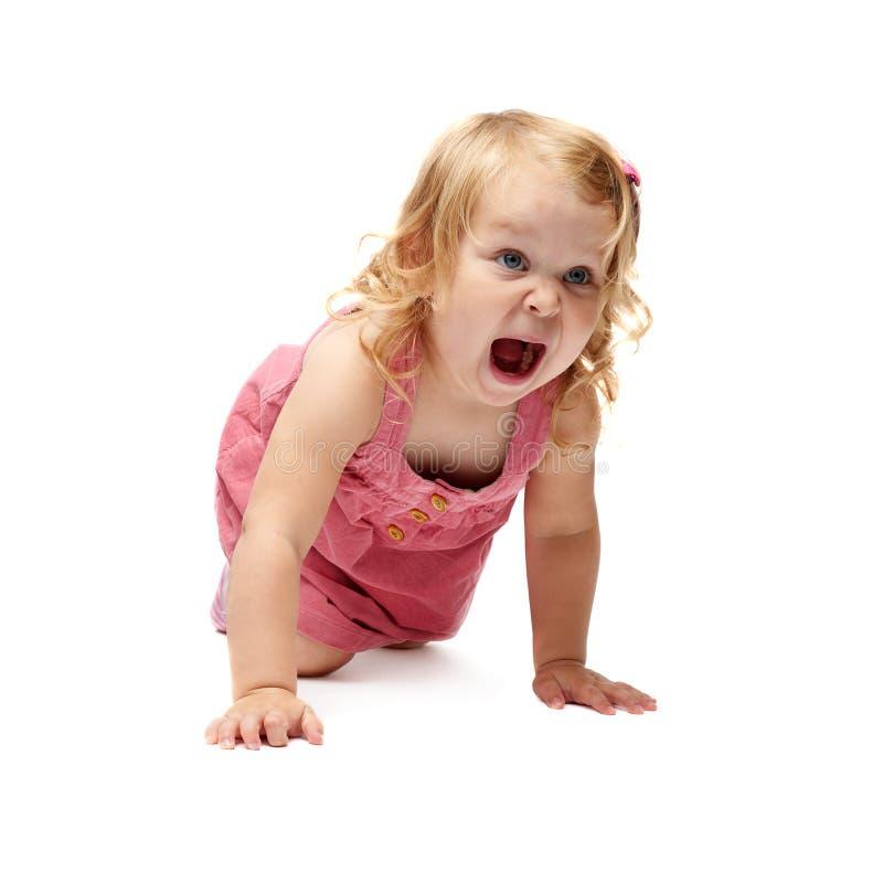 Giovane bambina che striscia sopra il fondo bianco isolato immagine stock