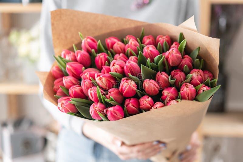 Giovane bella donna che tiene un mazzo della molla dei tulipani rossi in sua mano Mazzo di fiori tagliati freschi della molla in  immagini stock libere da diritti