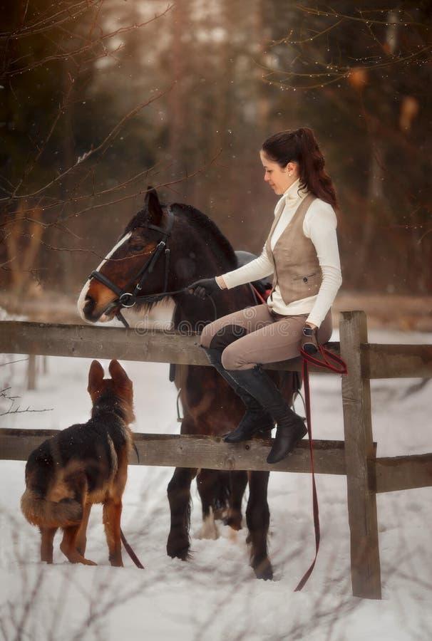 Giovane bella donna con il ritratto all'aperto del cane da pastore tedesco e del cavallo fotografie stock libere da diritti