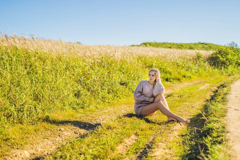 Giovane bella donna nel paesaggio di autunno con i fiori asciutti, punte del grano Autunno di modo, inverno Autunno soleggiato, a fotografie stock