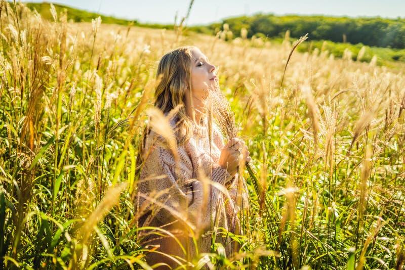 Giovane bella donna nel paesaggio di autunno con i fiori asciutti, punte del grano Autunno di modo, inverno Autunno soleggiato, a immagine stock