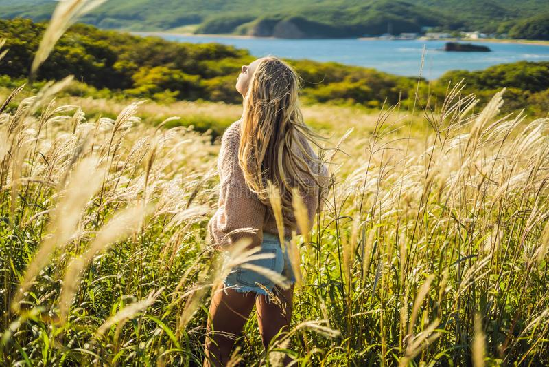 Giovane bella donna nel paesaggio di autunno con i fiori asciutti, punte del grano Autunno di modo, inverno Autunno soleggiato, a fotografia stock
