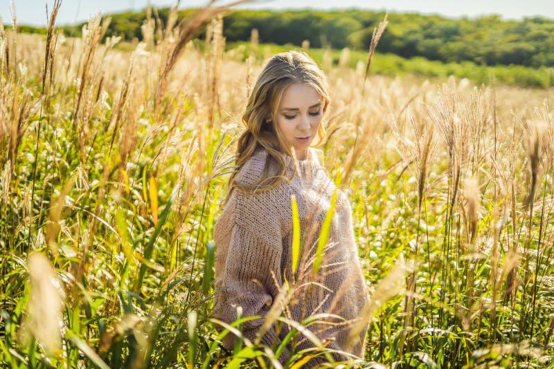 Giovane bella donna nel paesaggio di autunno con i fiori asciutti, punte del grano Autunno di modo, inverno Autunno soleggiato, a immagini stock