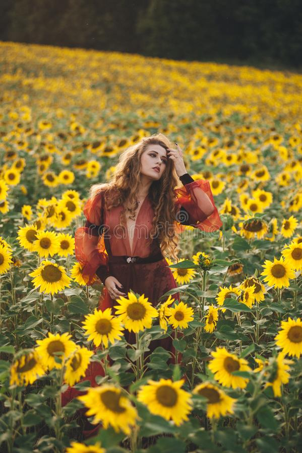 Giovane bella donna in un vestito fra i girasoli di fioritura Agro-cultura fotografie stock