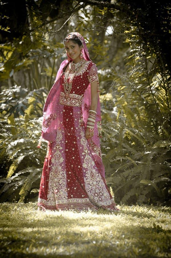 Giovane bella sposa indù indiana che sta sotto l'albero immagini stock libere da diritti