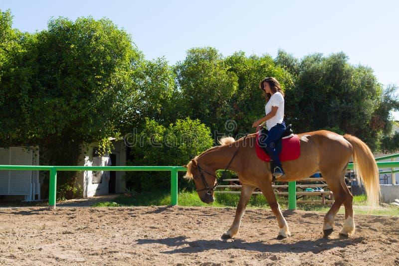 Giovane castana su un cavallo Brown-biondo in immagine stock