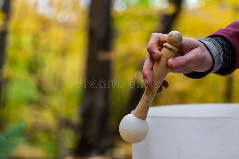 Giovane che gioca le ciotole a cristallo all'aperto nella foresta nella caduta 2/12 fotografie stock libere da diritti