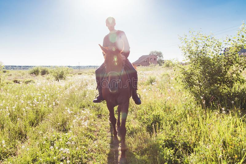Giovane che monta un cavallo nel campo immagine stock