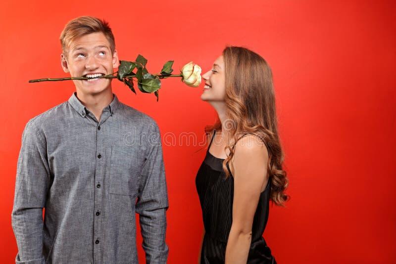 Giovane che tiene bello fiore per la sua amica cara in bocca sul fondo di colore fotografie stock