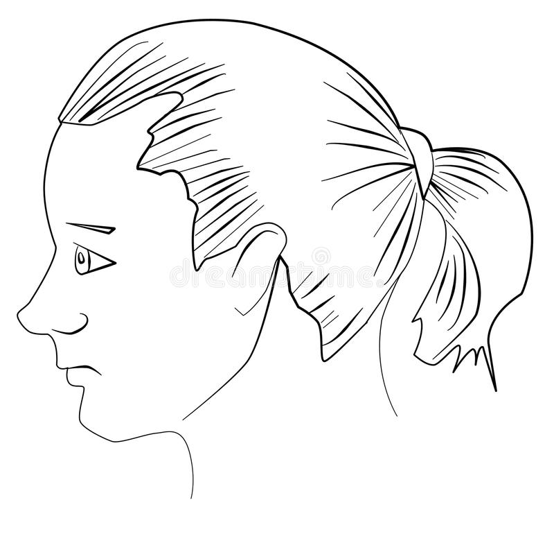 Giovane con il ponytail royalty illustrazione gratis