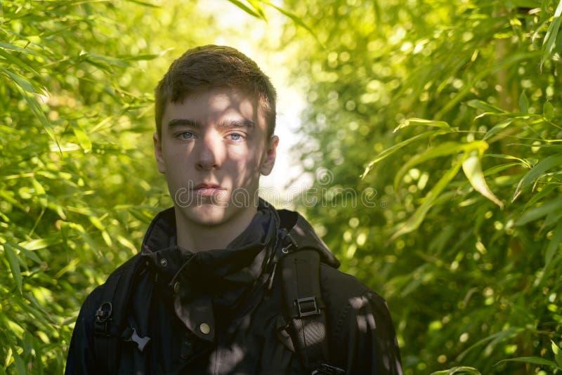 Giovane con le ombre di una foresta di bambù sul suo fronte immagini stock