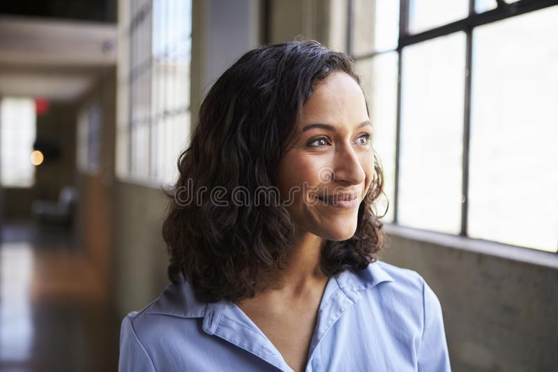 Giovane distogliere lo sguardo sorridente della donna di affari della corsa mista immagini stock libere da diritti