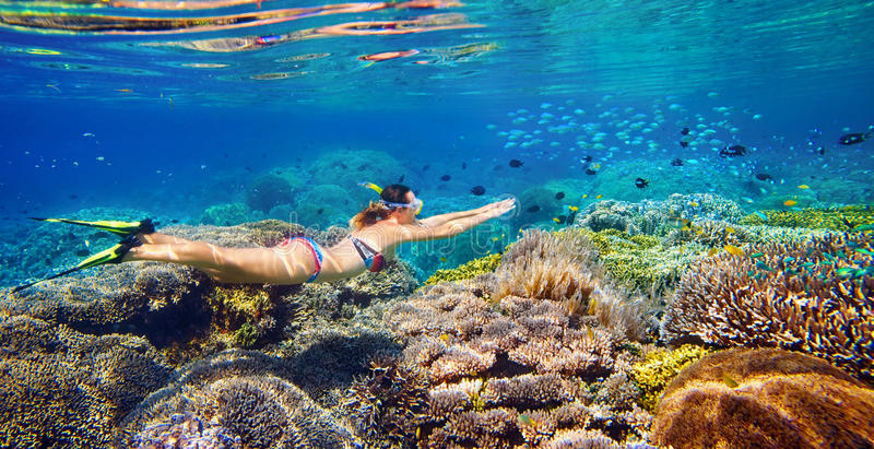 Giovane donna ad immergersi nell'acqua tropicale fotografia stock libera da diritti