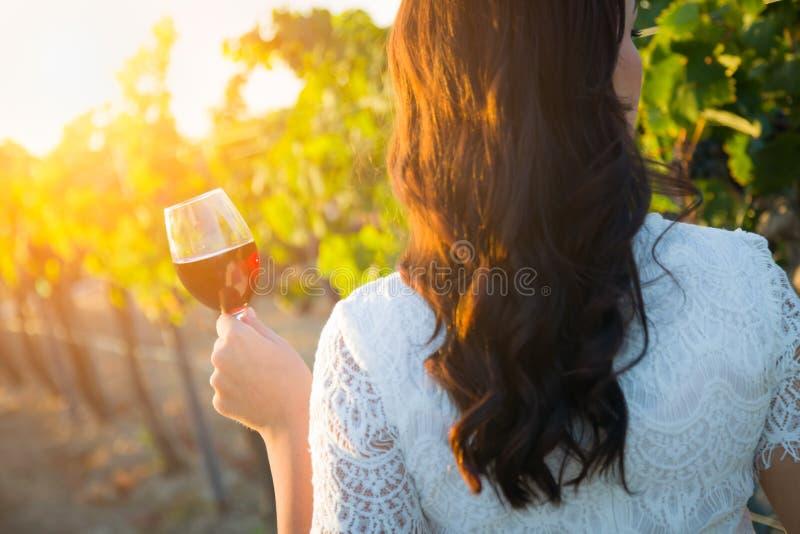 Giovane donna adulta che gode dell'assaggio del bicchiere di vino che cammina nella vigna immagini stock