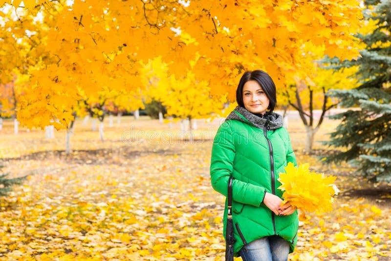 Giovane donna attraente che raccoglie le foglie di autunno fotografie stock