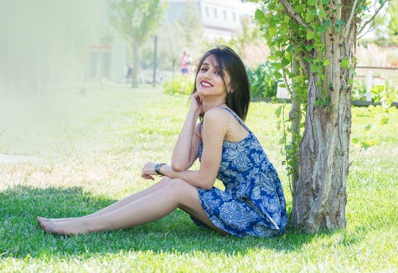 Giovane donna castana che si siede sul prato inglese sotto un albero immagini stock