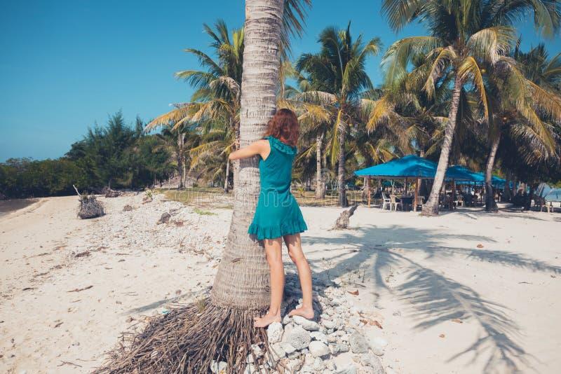 Giovane donna che abbraccia una palma fotografia stock libera da diritti