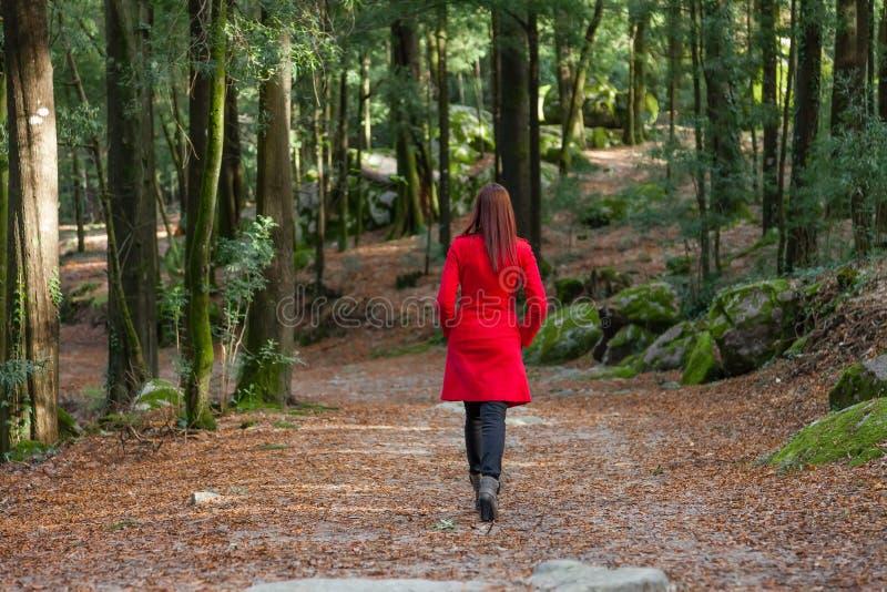 Giovane donna che cammina da solo su una foresta fotografie stock libere da diritti