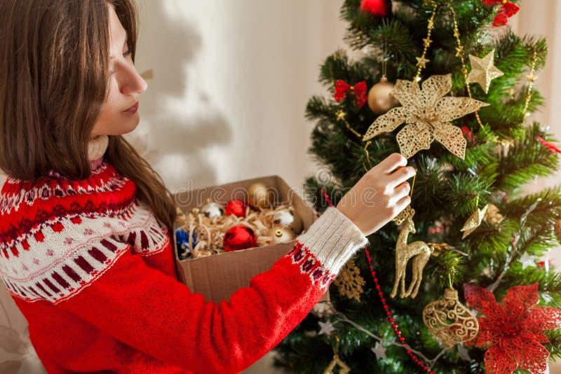 Giovane donna che decora l'albero di Natale a casa, portando il maglione di inverno Preparando al nuovo anno immagini stock libere da diritti
