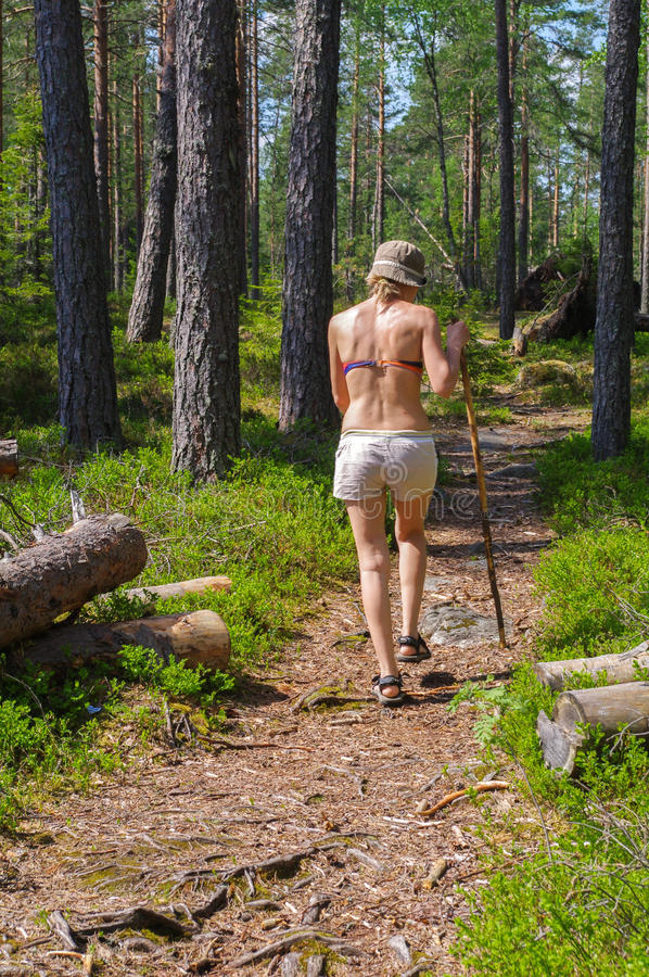 Giovane donna che fa un'escursione tramite il sentiero nel bosco verde con un bastone da passeggio immagini stock libere da diritti