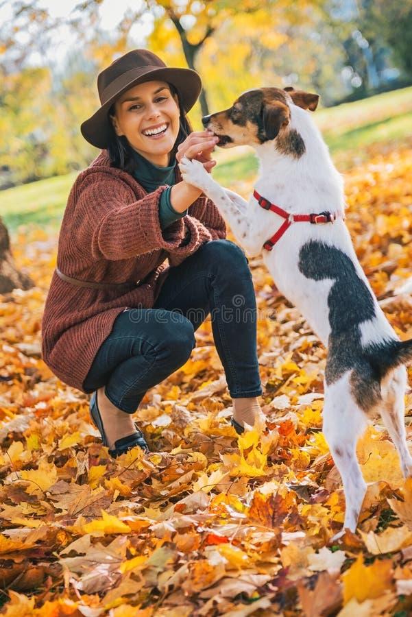 Giovane donna che gioca con il cane all'aperto in autunno fotografia stock libera da diritti