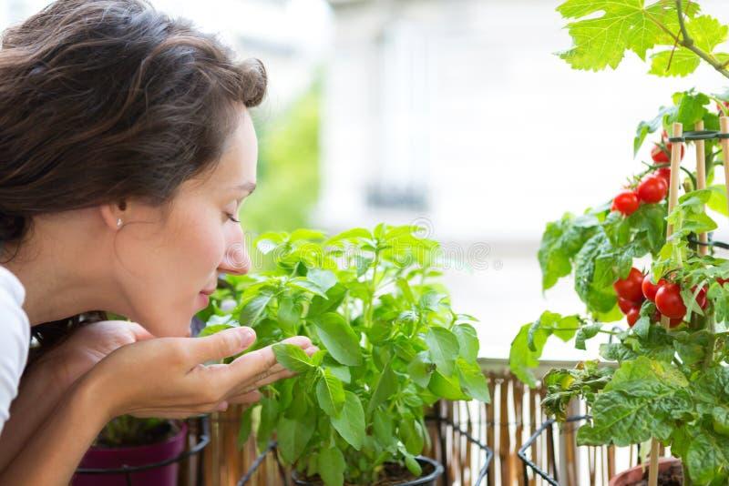 Giovane donna che prende cura delle sue piante e verdure sulla sua città immagini stock