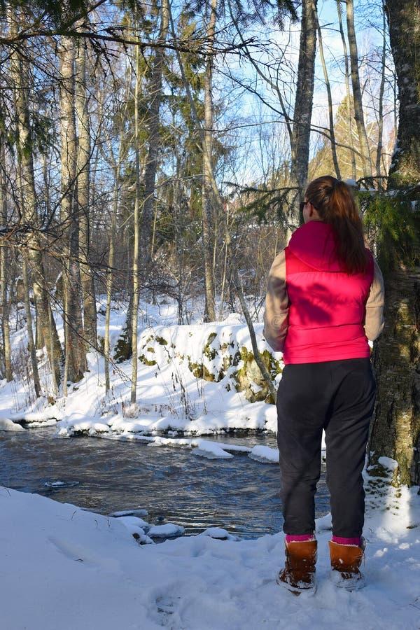 Giovane donna che sta nella foresta invernale e che guarda un'insenatura immagini stock libere da diritti