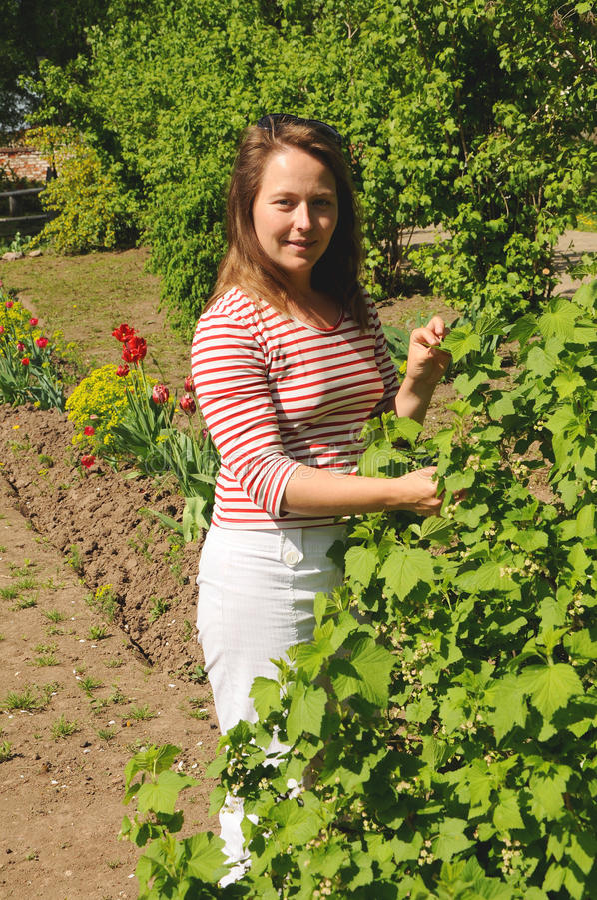 Giovane donna che sta vicino all'uva passa di un cespuglio fotografia stock libera da diritti