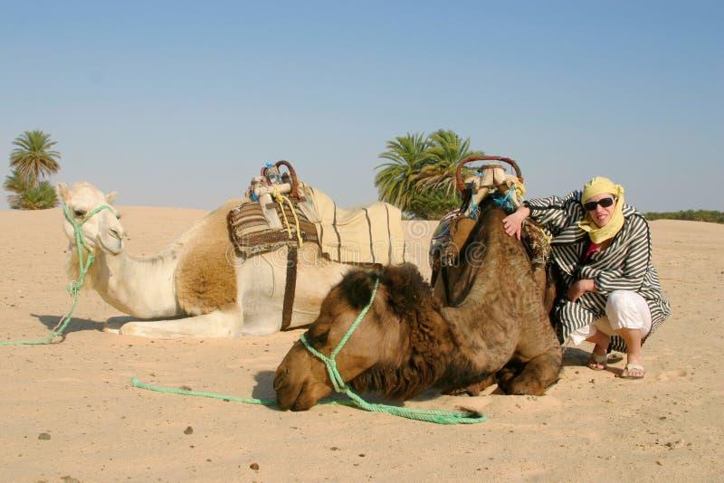 Giovane donna con i cammelli nel Sahara immagine stock libera da diritti