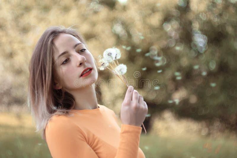 Giovane donna con i denti di leone fotografia stock libera da diritti