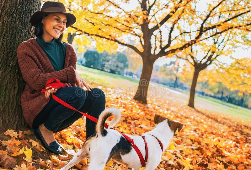 Giovane donna con il cane sveglio che si siede sotto l'albero nel parco di autunno immagini stock