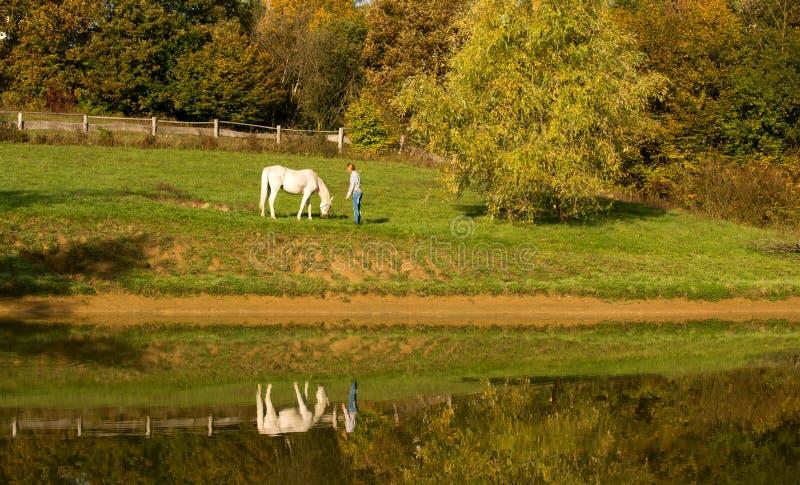 Giovane donna con il cavallo nel lago immagini stock