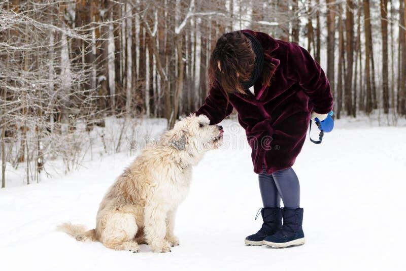 Giovane donna con il suo cane per una passeggiata nell'orario invernale Pastore verso sud russo Dog immagini stock libere da diritti