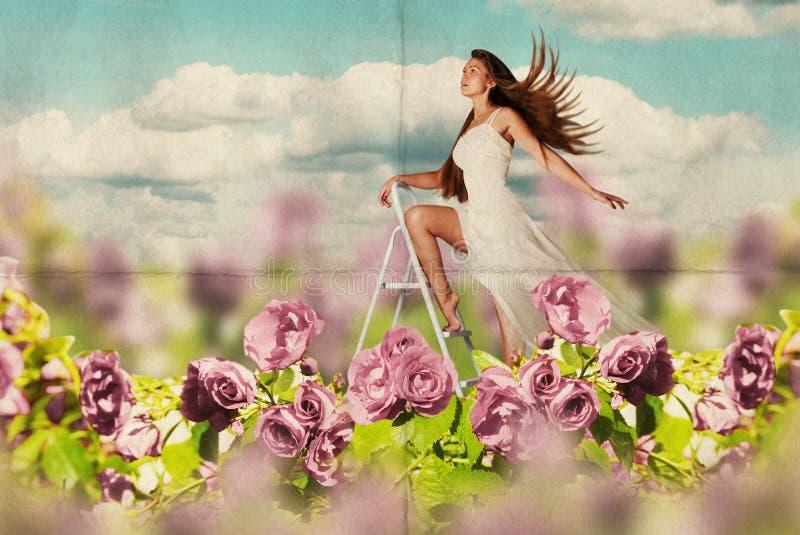 Giovane donna di bellezza in vestito sul prato fotografie stock