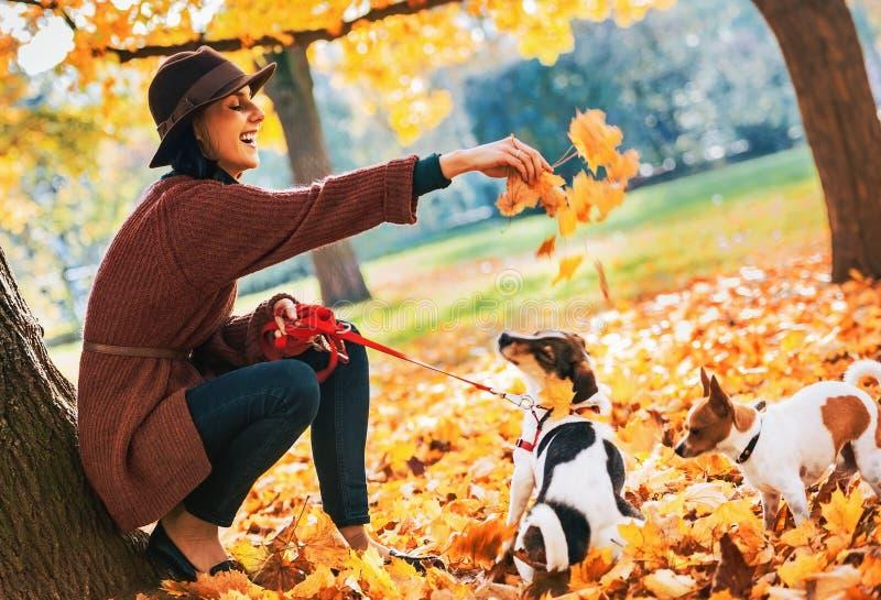 Giovane donna felice che gioca con i cani all'aperto in autunno immagini stock
