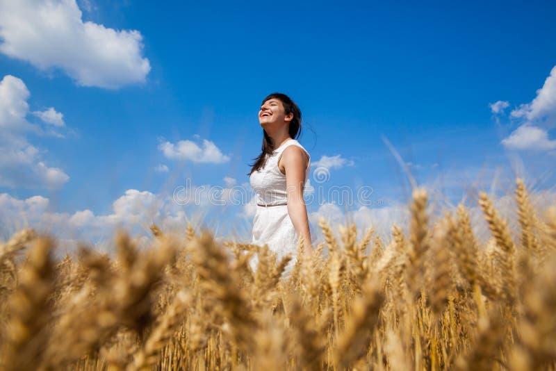 Giovane donna felice che gode della vita nel giacimento di grano dorato fotografie stock libere da diritti