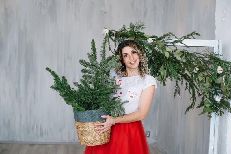 Giovane donna felice con un abete verde in vaso a casa fotografia stock