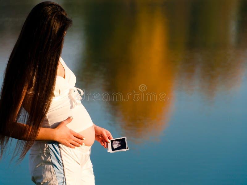Giovane donna incinta attraente in natura fotografia stock libera da diritti