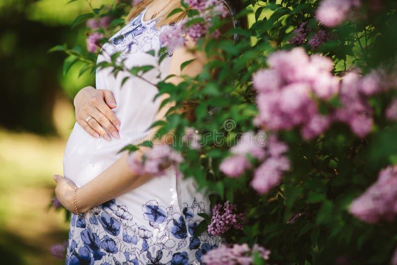 Giovane donna incinta contro l'albero sbocciante in primavera fotografie stock