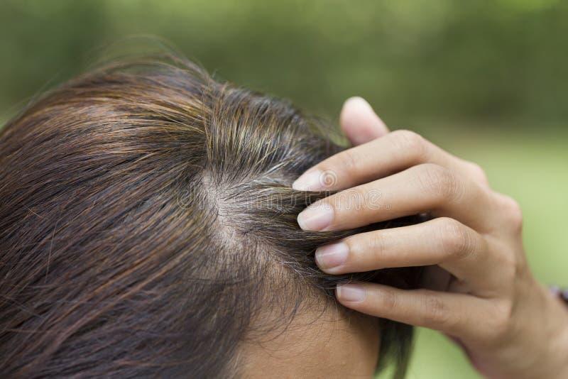 Giovane donna le che mostra capelli grigi fotografie stock libere da diritti