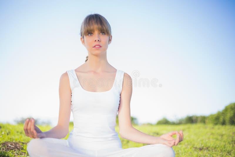 Giovane donna naturale che fa yoga immagine stock libera da diritti