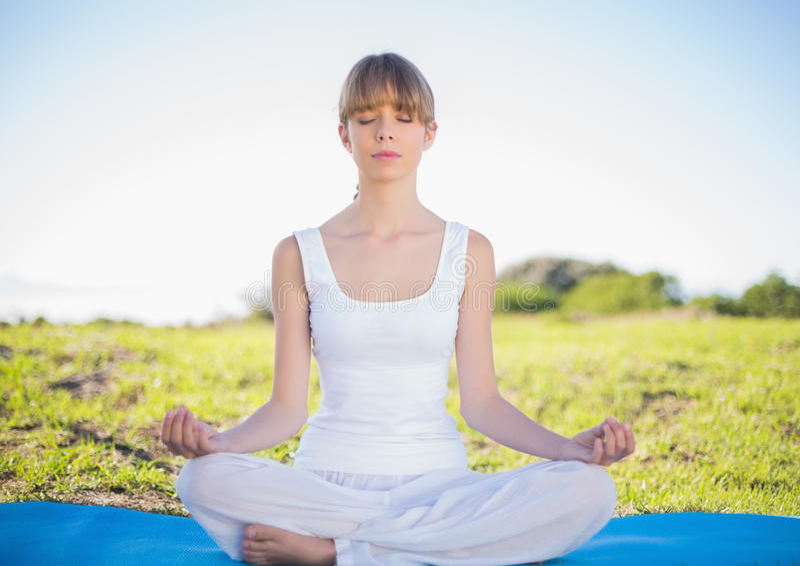 Giovane donna naturale contenta che fa yoga immagine stock libera da diritti