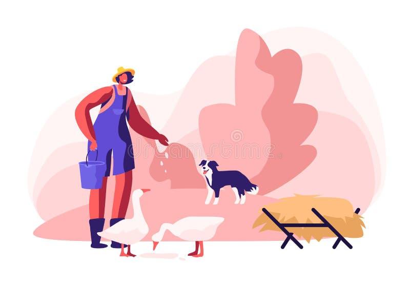 Giovane donna nelle oche d'alimentazione di lavoro dell'abito, supporto del cane vicino Agricoltore femminile, carattere del paes royalty illustrazione gratis