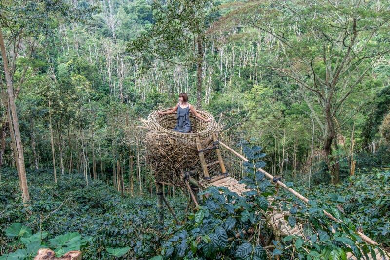 Giovane donna in nido artificiale in foresta pluviale dell'isola tropicale di Bali, Indonesia fotografie stock libere da diritti