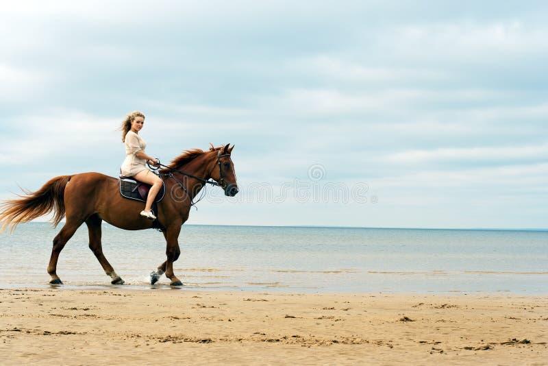 Giovane donna su un cavallo fotografia stock libera da diritti