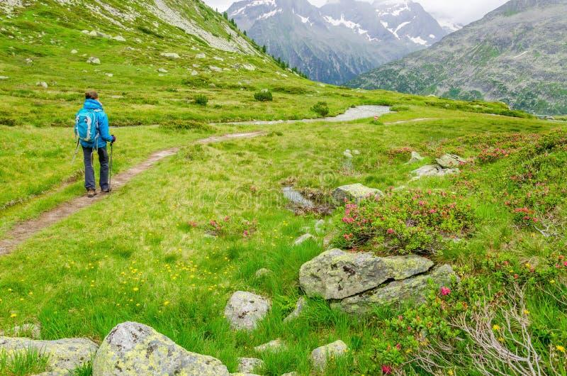 Giovane donna su una traccia di montagna, alpi, Austria immagini stock