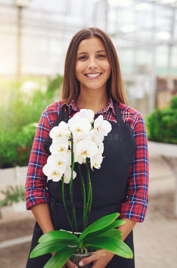 Giovane fiorista sorridente che tiene un'orchidea immagini stock libere da diritti