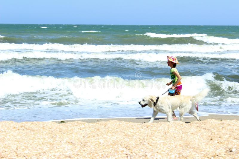 Giovane funzionamento del cane di golden retriever e della bambina sulla spiaggia immagini stock libere da diritti